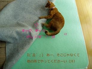 b0200310_611584.jpg