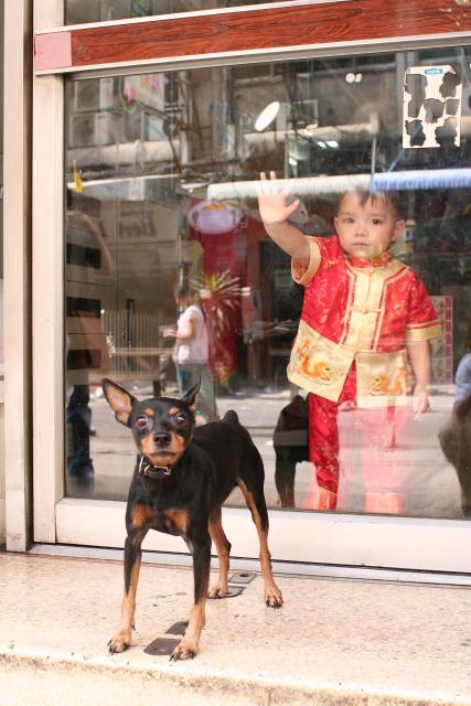 バンコク  盤谷番犬考_b0061717_0213297.jpg