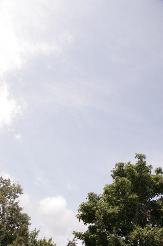 ミツバチと私_f0106597_019479.jpg
