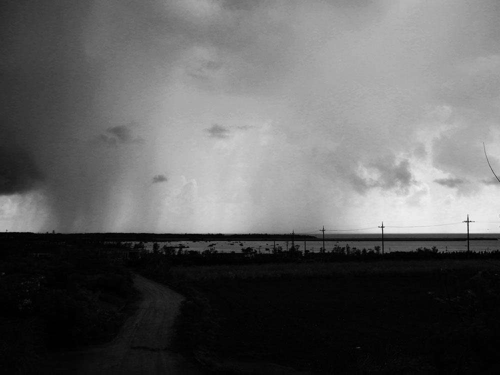 雨のベール_e0004009_073596.jpg