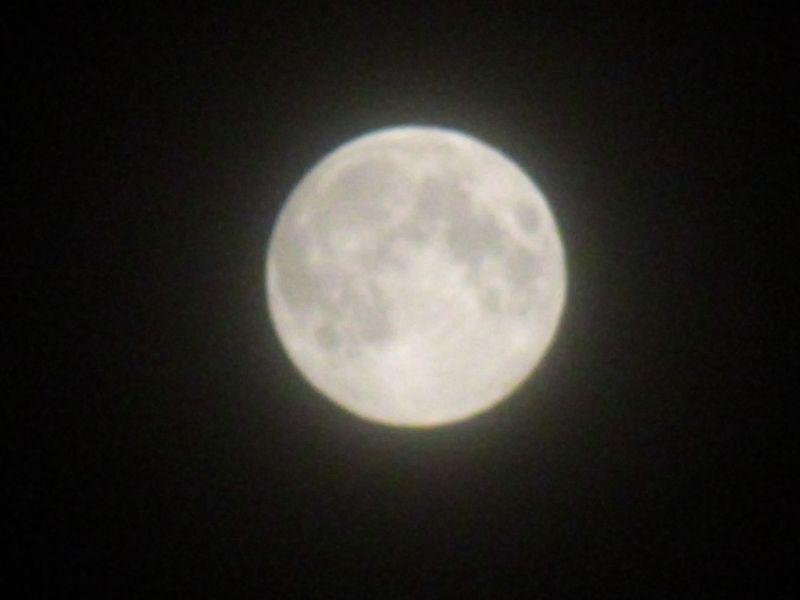 おぼろ月夜_c0025115_23324677.jpg