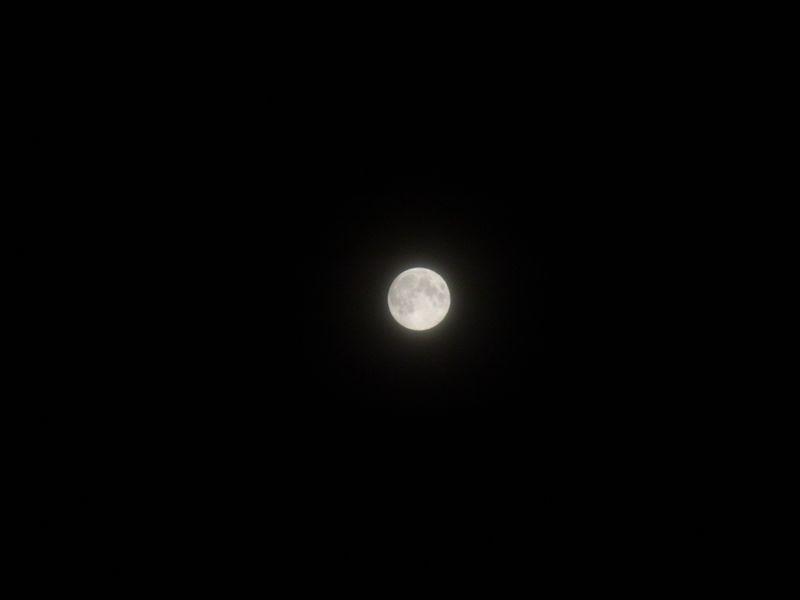おぼろ月夜_c0025115_2332487.jpg