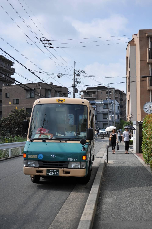 朝 服部緑地へ_b0069128_14594338.jpg