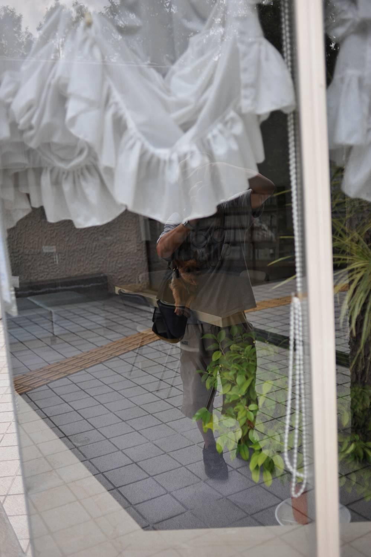 朝 服部緑地へ_b0069128_15445976.jpg