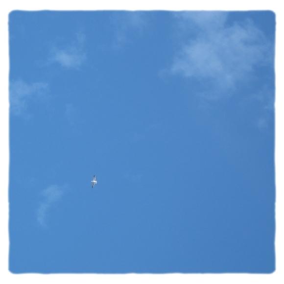 *空には*_e0199776_21493377.jpg