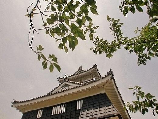2011年浜松④ 浜松城公園_b0018885_1581464.jpg