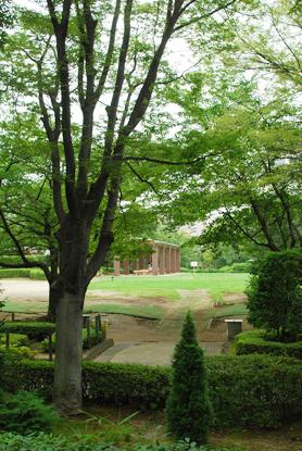 夏の花散歩 2011_d0113613_12323186.jpg