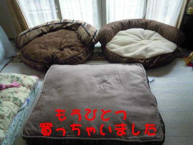 c0166622_12514082.jpg