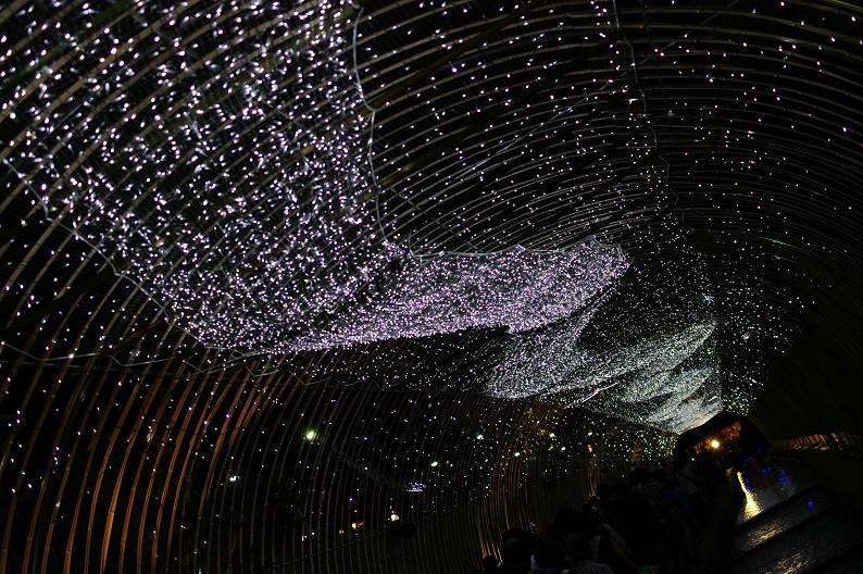 京の七夕 2011... _f0152550_12224767.jpg