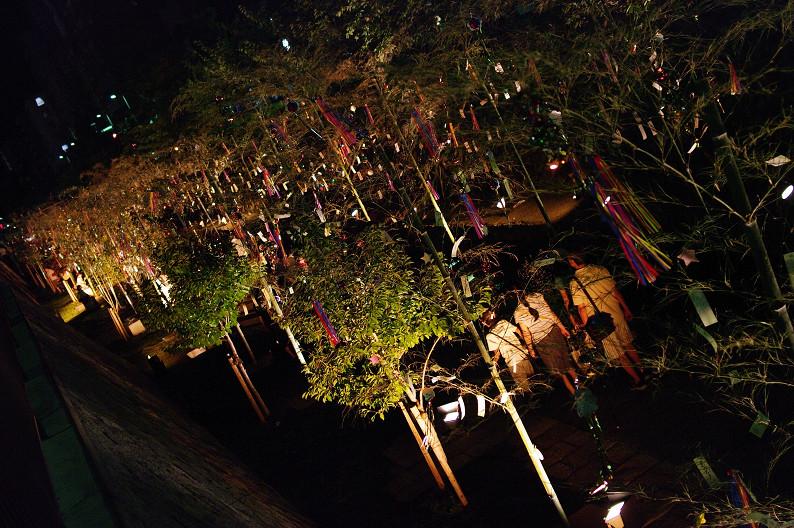 京の七夕 2011... _f0152550_1223222.jpg