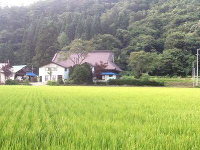 夏休み@実家_b0093660_21265117.jpg