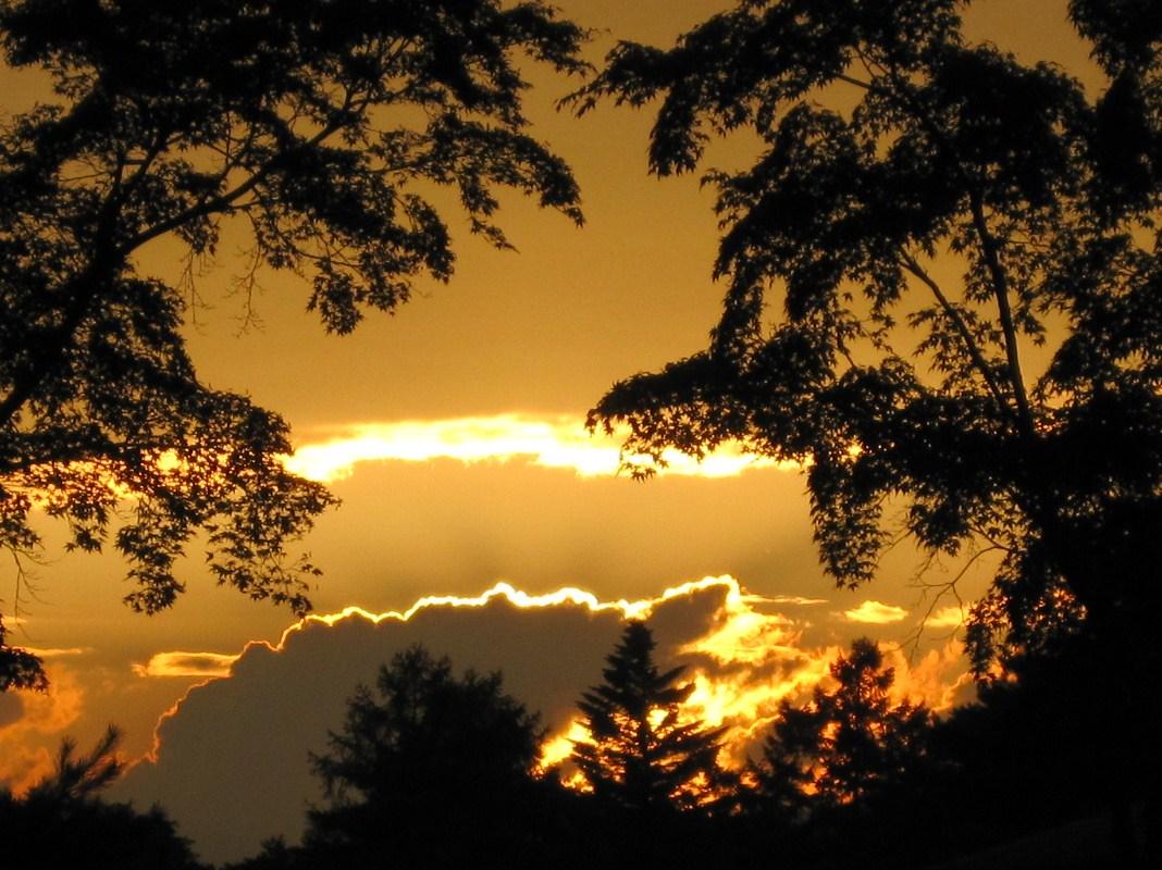 夏の夕景_f0236260_1956215.jpg