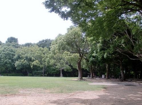 2011年浜松④ 浜松城公園_b0018885_1813489.jpg