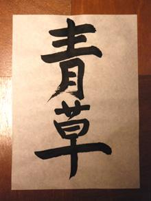 青草_e0103024_23264059.jpg