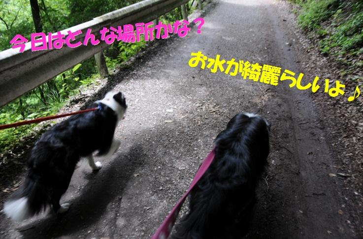 c0147241_044596.jpg