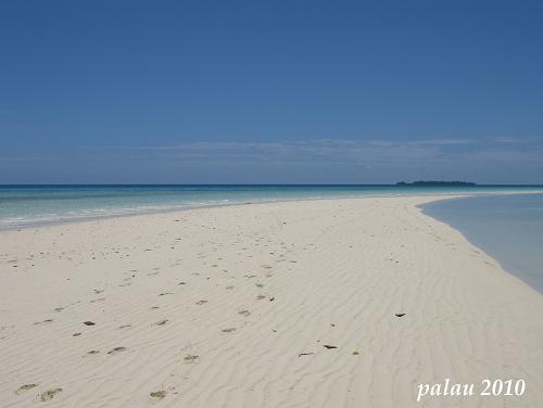 palau2010 #4 Long beach_f0169341_21531362.jpg