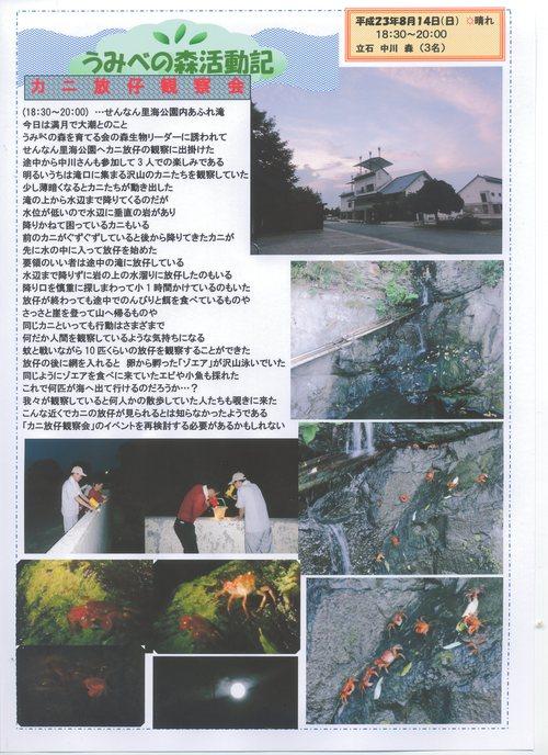 カニ放仔の観察 in  せんなん里海公園_c0108460_21163099.jpg