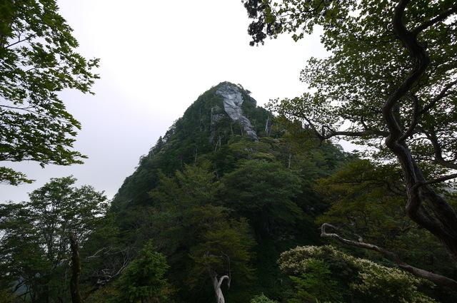 前鬼~釈迦ヶ岳_e0214805_712931.jpg