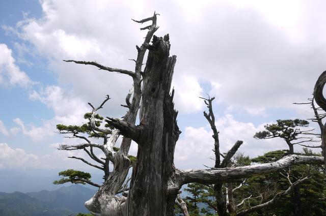 前鬼~釈迦ヶ岳_e0214805_727452.jpg