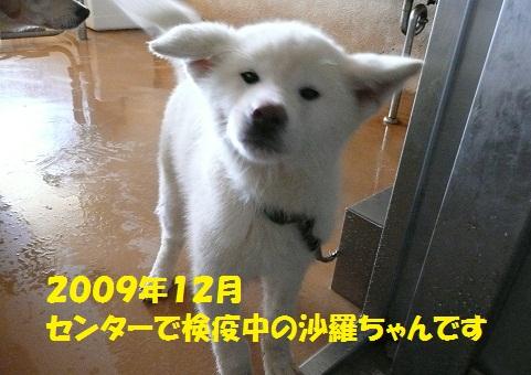 f0121712_16242335.jpg
