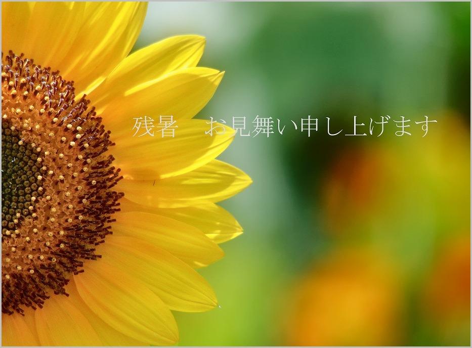 f0221514_936756.jpg