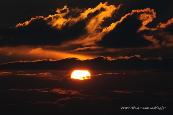 太陽と熊_a0229217_1482734.jpg