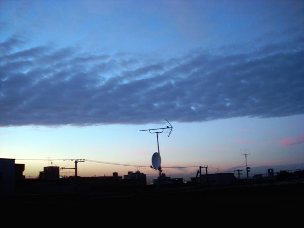 波状雲(畝雲)_f0227323_19164789.jpg