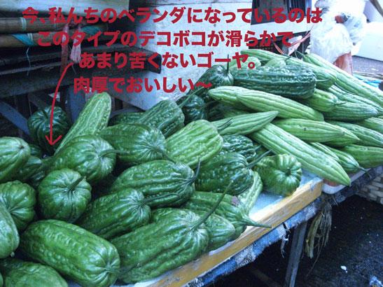 f0063645_01121.jpg