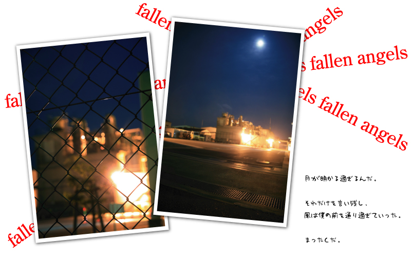 a0220952_045987.jpg