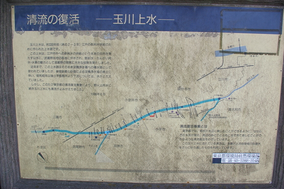 武蔵野台地横断行:short excursion across Musashino upland_a0186568_12582863.jpg