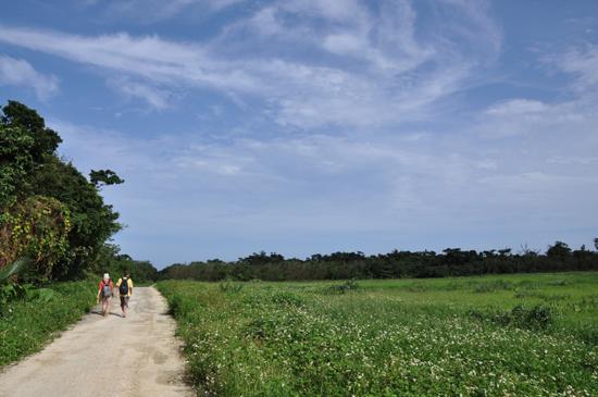 夏休み気分を味わえる写真_e0171573_14354100.jpg