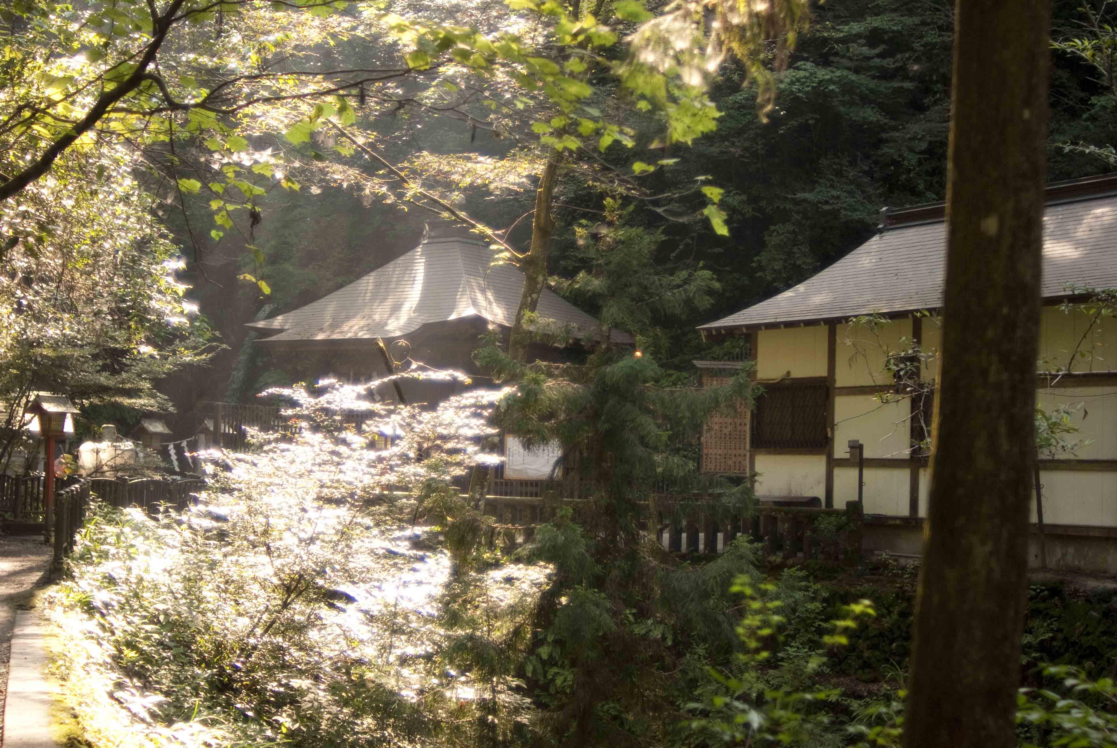 夏・山・幻・想_b0194880_12462657.jpg