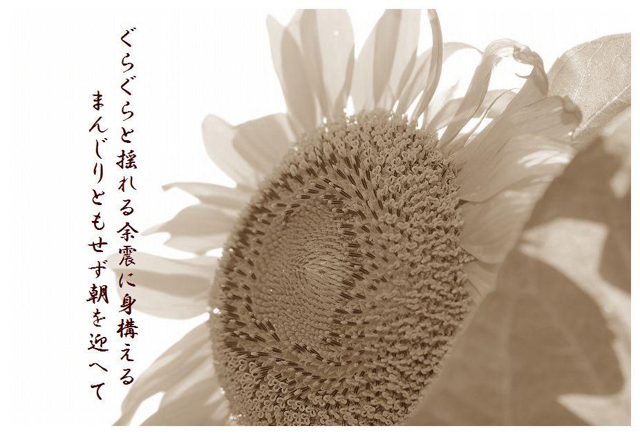 「夏を詠む」 夏の短歌2011 (2012)_c0187781_9193037.jpg
