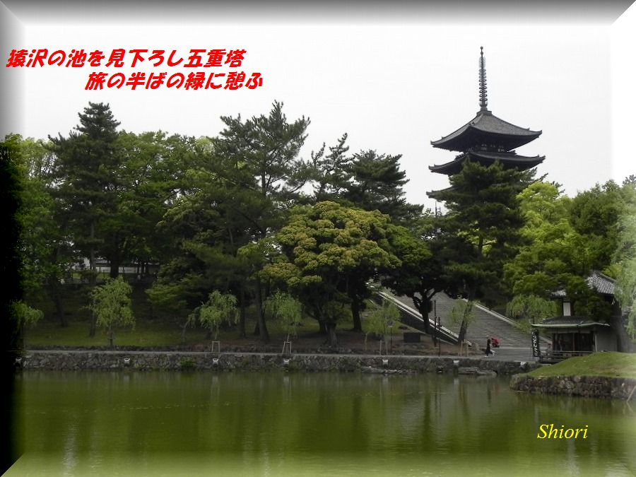 「夏を詠む」 夏の短歌2011 (2012)_c0187781_9205082.jpg
