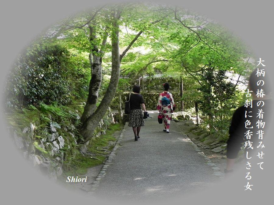 「夏を詠む」 夏の短歌2011 (2012)_c0187781_9211258.jpg