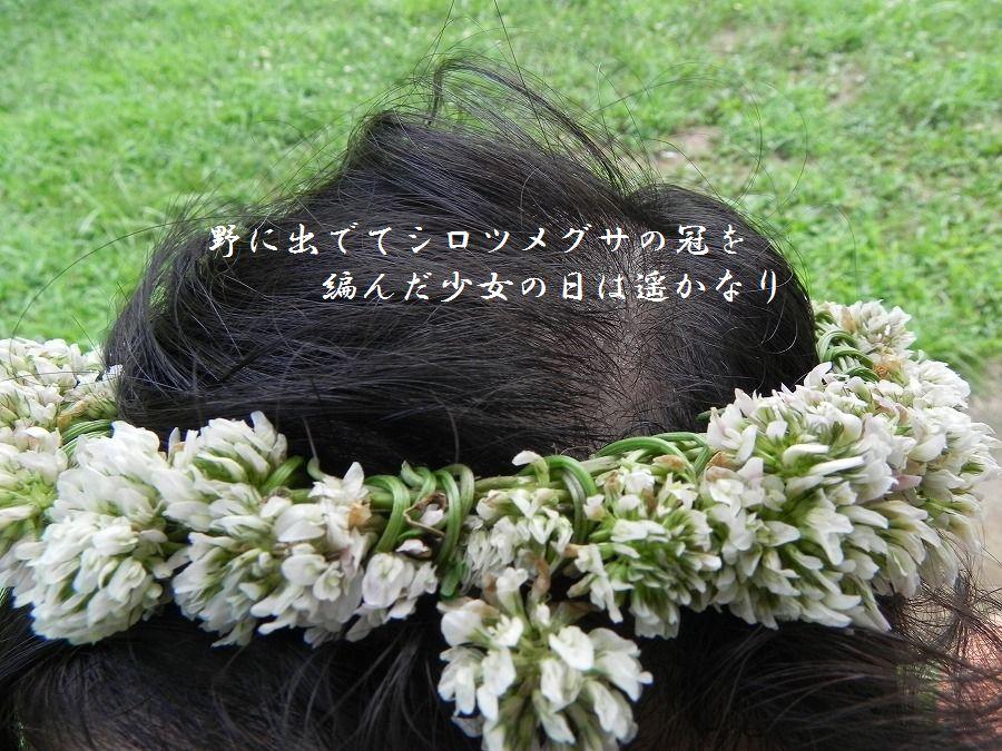 「夏を詠む」 夏の短歌2011 (2012)_c0187781_9221461.jpg