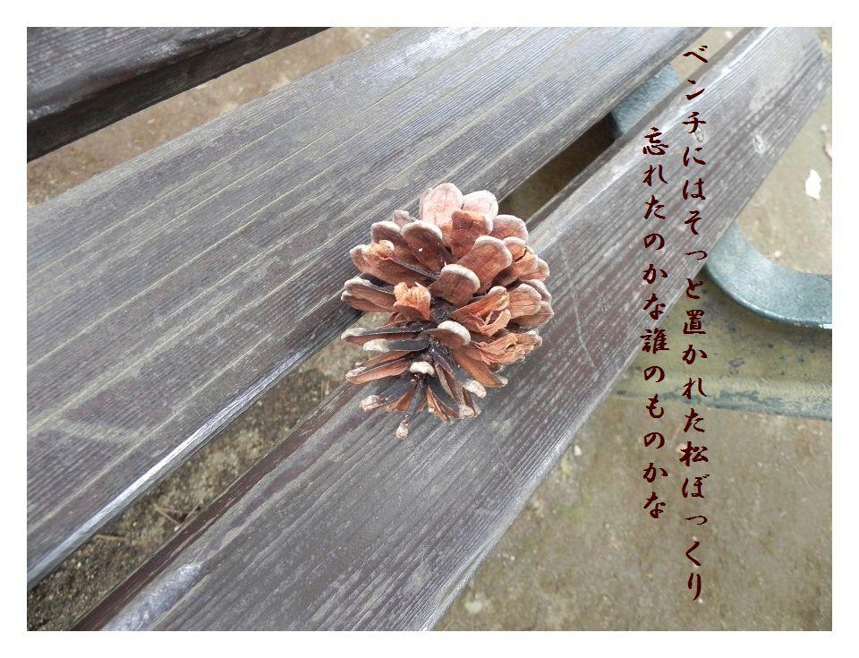「夏を詠む」 夏の短歌2011 (2012)_c0187781_9223232.jpg