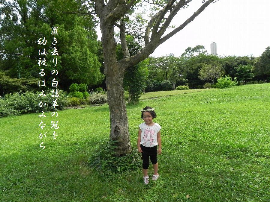 「夏を詠む」 夏の短歌2011 (2012)_c0187781_9225022.jpg