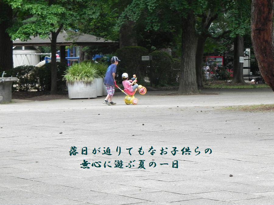 「夏を詠む」 夏の短歌2011 (2012)_c0187781_9233551.jpg