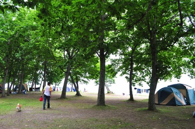 北海道キャンプ⑩ 屈斜路湖での恐怖の思い出_a0126590_17255321.jpg