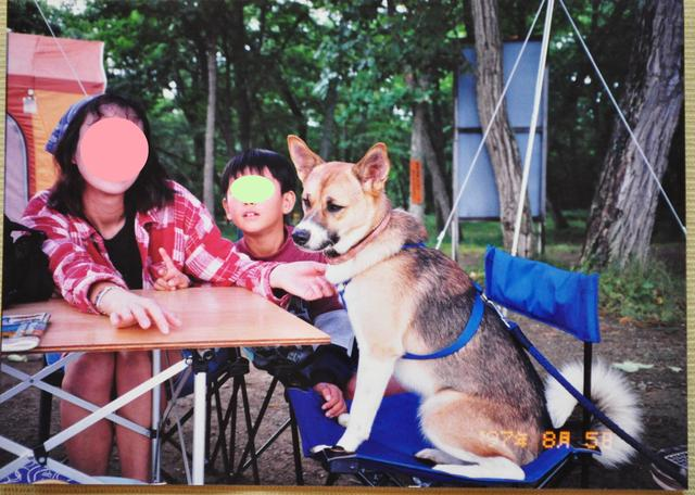 北海道キャンプ⑩ 屈斜路湖での恐怖の思い出_a0126590_21445284.jpg