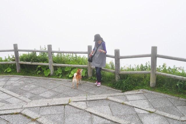 北海道キャンプ⑩ 屈斜路湖での恐怖の思い出_a0126590_2222245.jpg