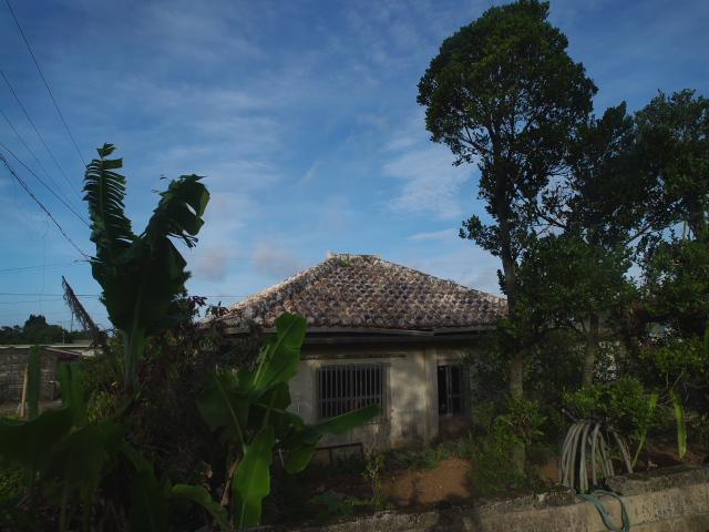 宮古島の風景 朝の散歩_f0024992_715922.jpg