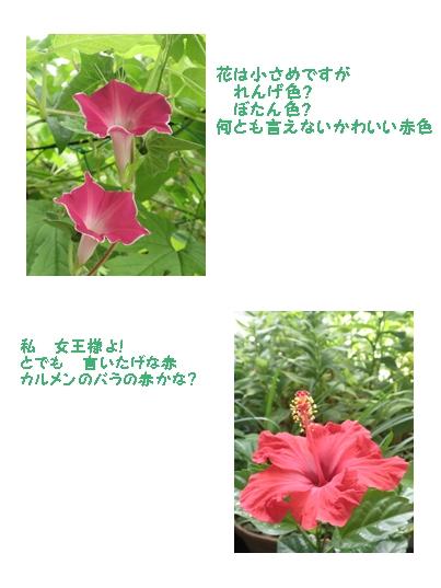 b0229904_21253169.jpg