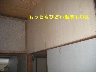 f0031037_2245345.jpg