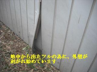 f0031037_22483790.jpg