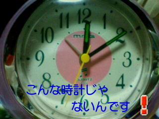 a0108346_2355326.jpg