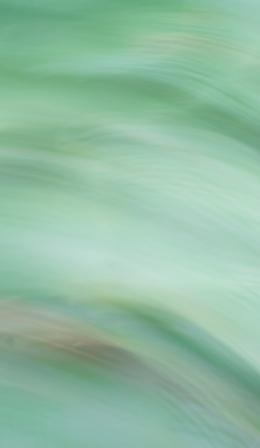 アイスチャイとカステラ_d0005250_18361379.jpg