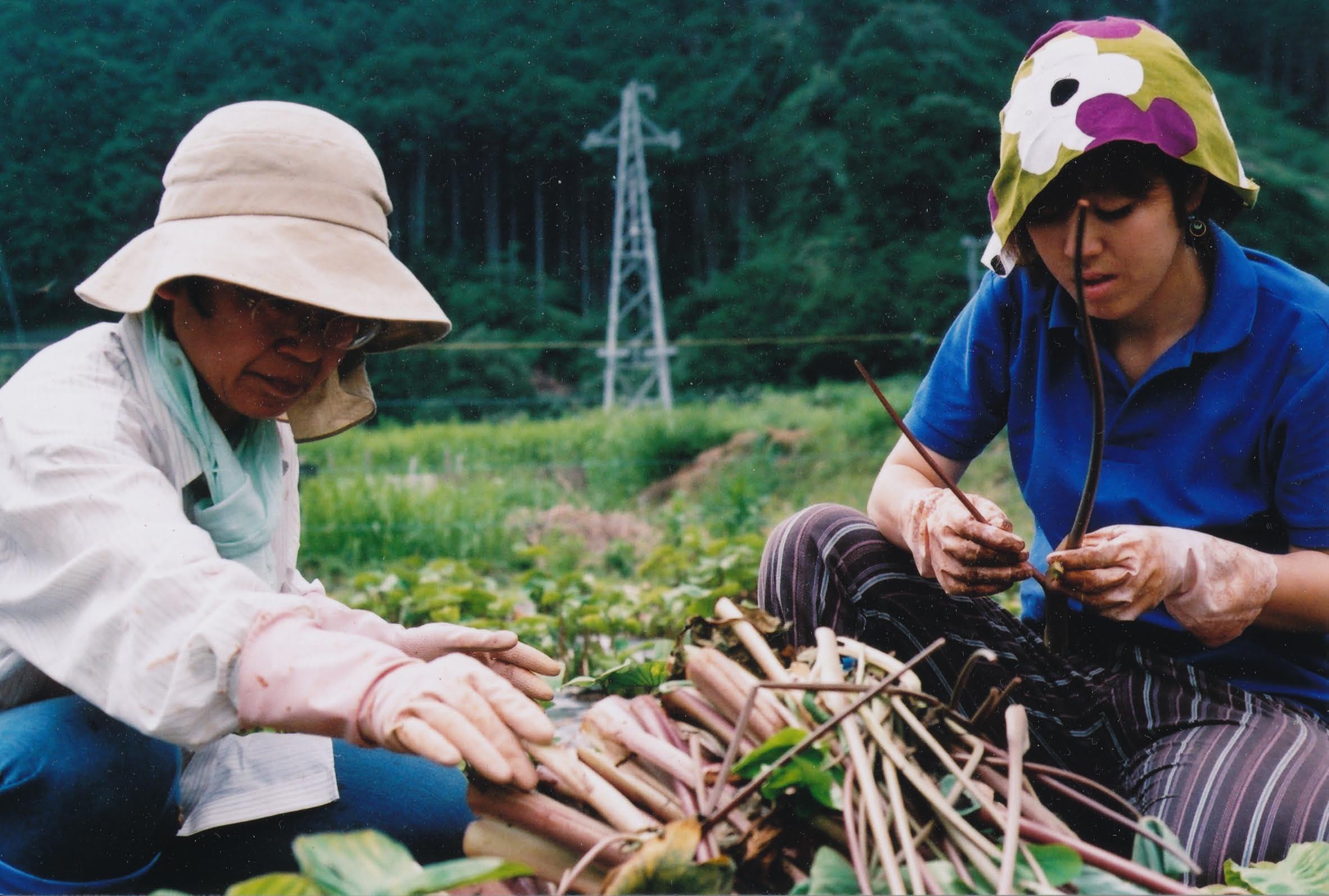 ごんべえ畑の収穫祭☆その4_e0156251_23121597.jpg