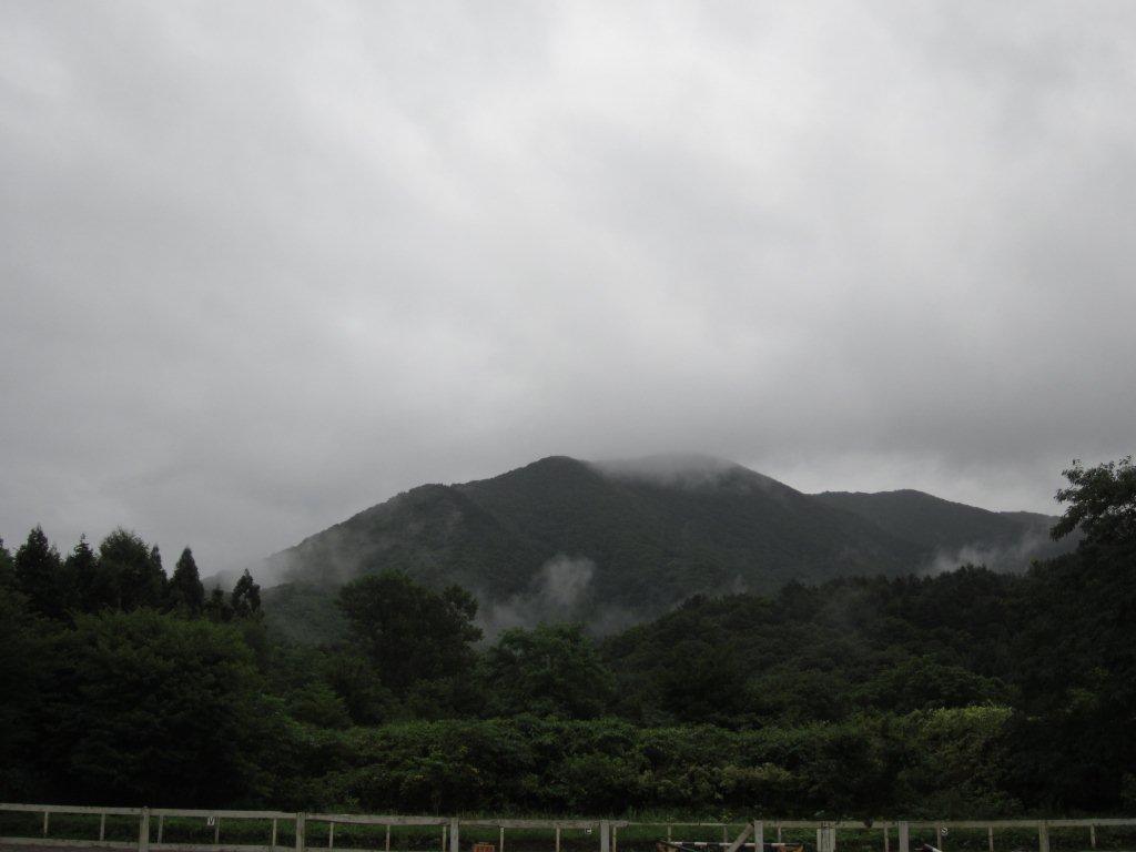 雨で涼しく_e0186499_1647250.jpg